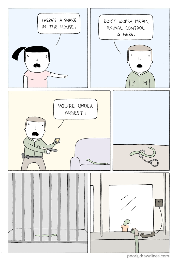 snake-in-the-house1