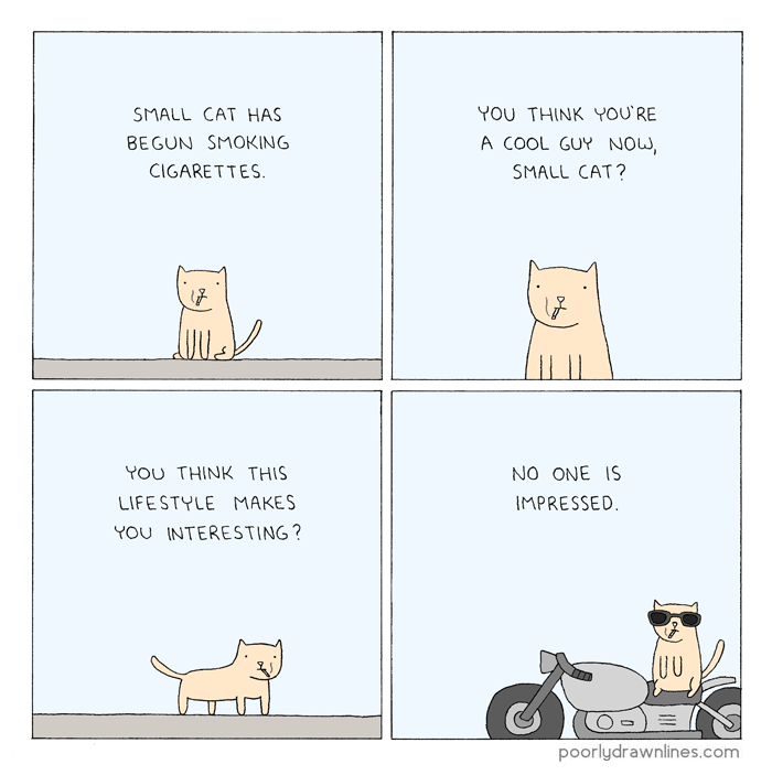 cool_small_cat