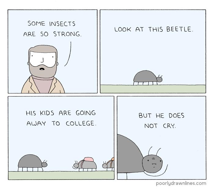 so-strong